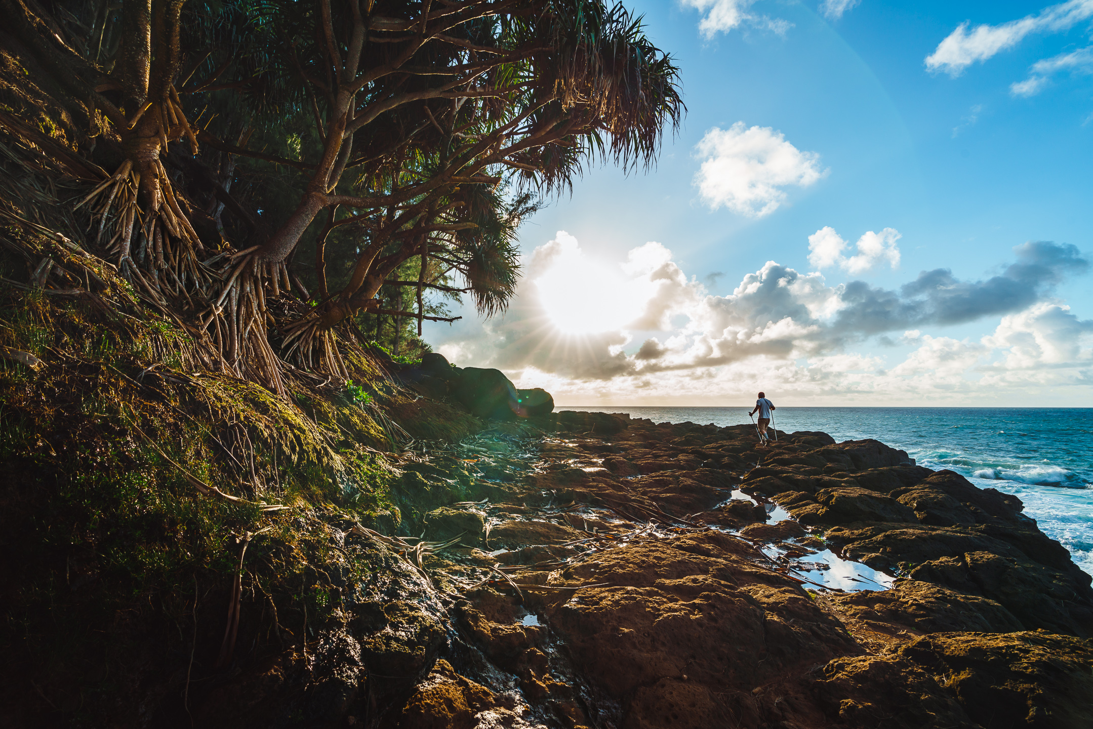 NickMarx_Hawaii_-08266-Edit